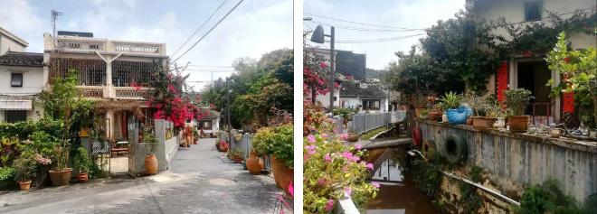 Shenzhen · Culture & Creative 14